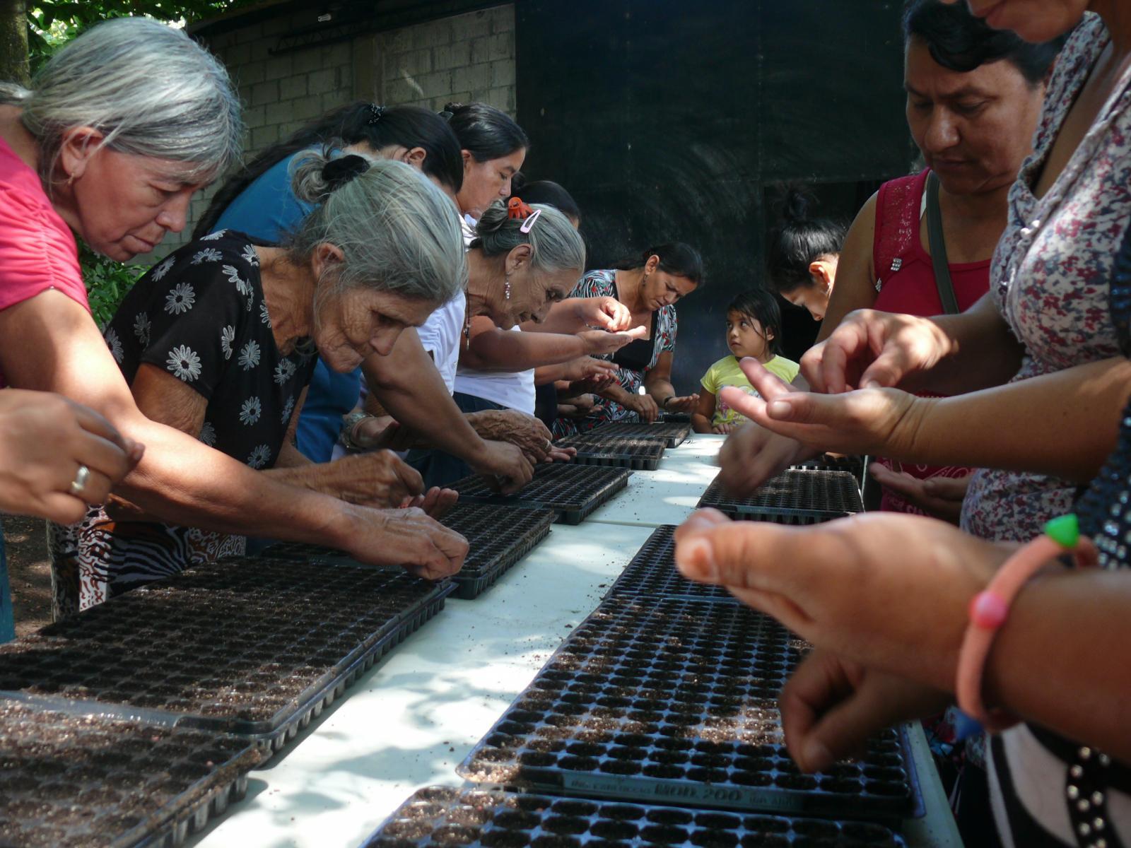 Mejorar el desarrollo económico y social  con equidad de productoras y productores agropecuarios en los municipios de Suchitoto y Cinquera. El Salvador.