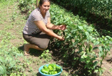 Tierra Sin Males: Tierra sin Males en El Salvador